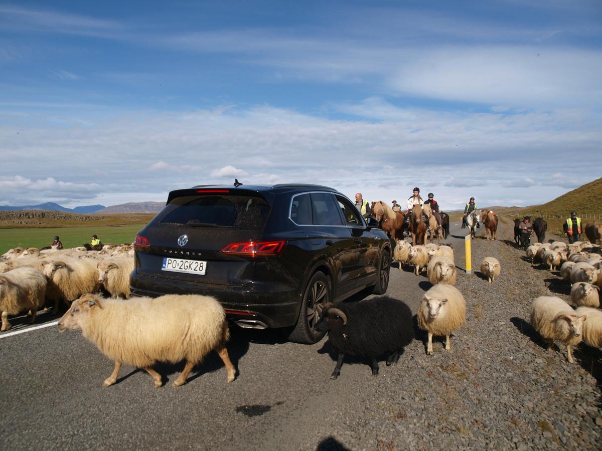 """Każdy SUV ma zapas. Wszystkiego. Mocy, miejsca, prześwitu. Wygląd też ma """"zapaśniczy"""". Dlatego jak mało który samochód nadaje się na wyprawę do miejsc, których turyści jeszcze nie zadeptali. Na przykład na Islandię.   Fot. Michał Kij"""