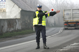 Punkty karne kierowcy sprawdzą w sieci. Od kiedy?