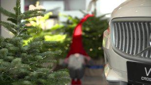 """Boże Narodzenie. Bądź eko. Rusza trzecia edycja akcji społecznej """"Wypożyczalnia choinek Volvo"""" (video)"""