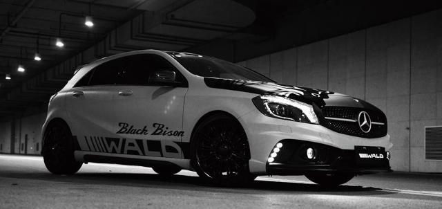 Mercedes-Benz Klasy A Black Bison / Fot. Wald International