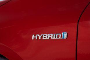 Samochody hybyrdowe. Najpopularniejsze modele w Polsce