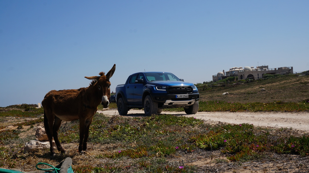 Właśnie odbyła się premiera Forda Rangera w wersji Raptor. Nowość od amerykańskiego producenta zaprezentowano w Maroko, gdzie bezkresna pustynia i skaliste drogi pozwoliły zweryfikować jego umiejętności. Raptor ze starcia z surowym, afrykańskim terenem wyszedł zwycięsko, a wręcz – fenomenalnie.   Fot. Konrad Grobel