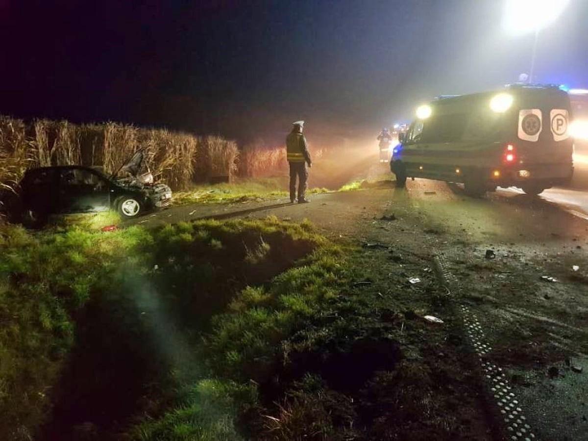 Pod Grudziądzem pijany kierowca zjechał z drogi i dachował. Fot. Policja