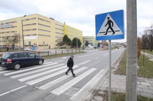 Znaki poziome. Co oznaczają i jak pomagają kierowcom?