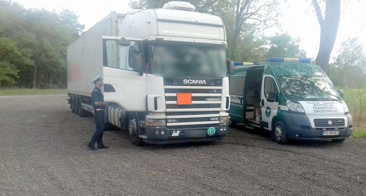 W gminie Kostrzyn inspektorzy Sekcji Wielkopolskiej BKOE zatrzymali do kontroli ciężarówkę, przewożącą materiały niebezpieczne ADR. Kierowca i przewoźnik w jednej osobie wykonywał krajowy przewóz drogowy z Gdyni do Poznania. Kontrola zaczęła się od stwierdzenia braku opłaty za przejazd drogami płatnymi - to był jednak dopiero początek długiej listy naruszeń. Były one na tyle poważne, że pojazd nie mógł wyruszyć w trasę.  Fot. GITD