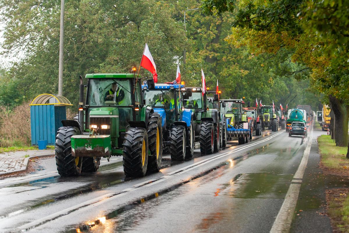 Zdjęcie ilustracyjne  FOT: ARKADIUSZ WOJTASIEWICZ/POLSKAPRESS
